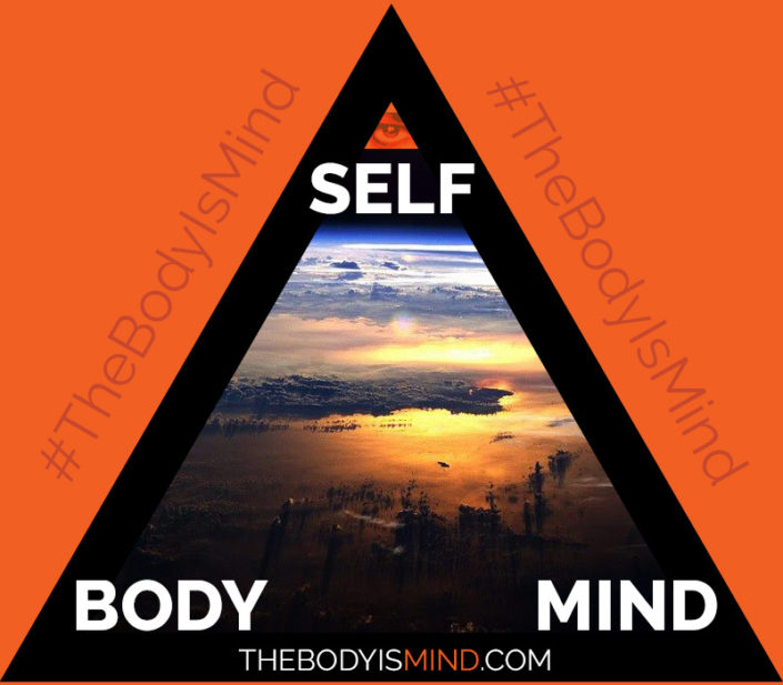 This digital illustration of a black triangle on an orange field represents the self, body and mind relationship, with self depicted at the top and both body and mind at the bottom two corners, and an image of earth from space in the middle of the triangle. This image is used as a navigation button for the Ultimate Healing Guide, and on the Self plus bodymind relationship page of The Body Is Mind website.