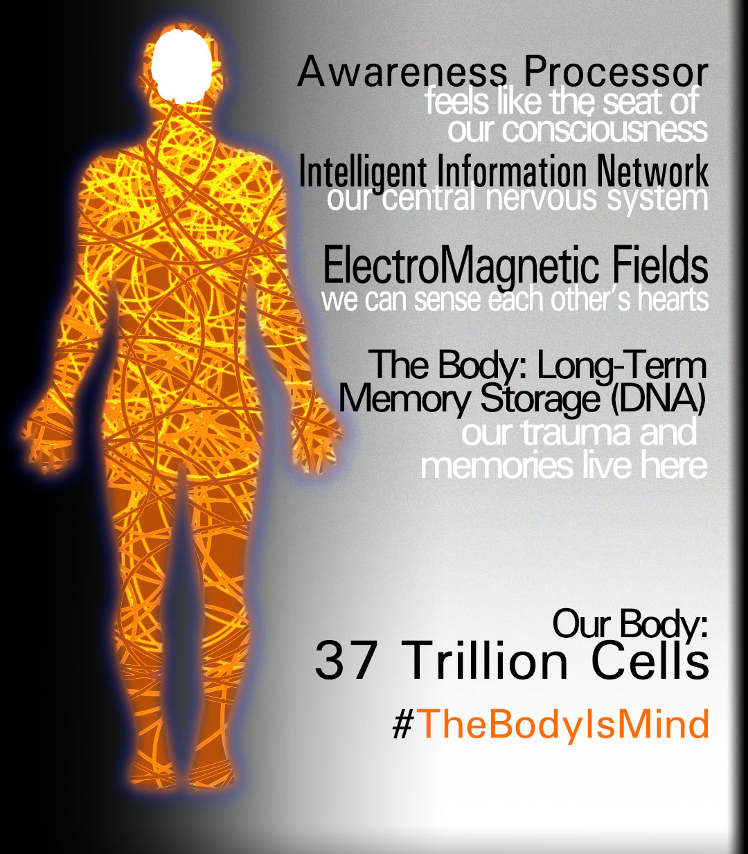 There are an average of 37 trillion cells in the human body organic intelligence system. The Body Is Mind. #thebodyismind