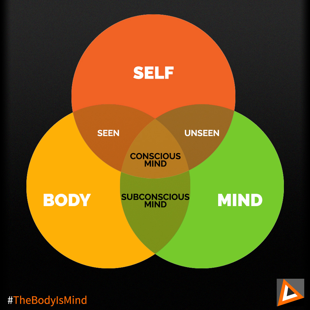 self-body-mind Venn diagram used on the Self+BodyMind Relationship article in the Ultimate Healing Guide - TheBodyIsMind